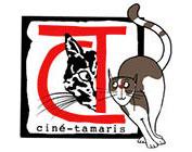 ellipse formation client Ciné Tamaris